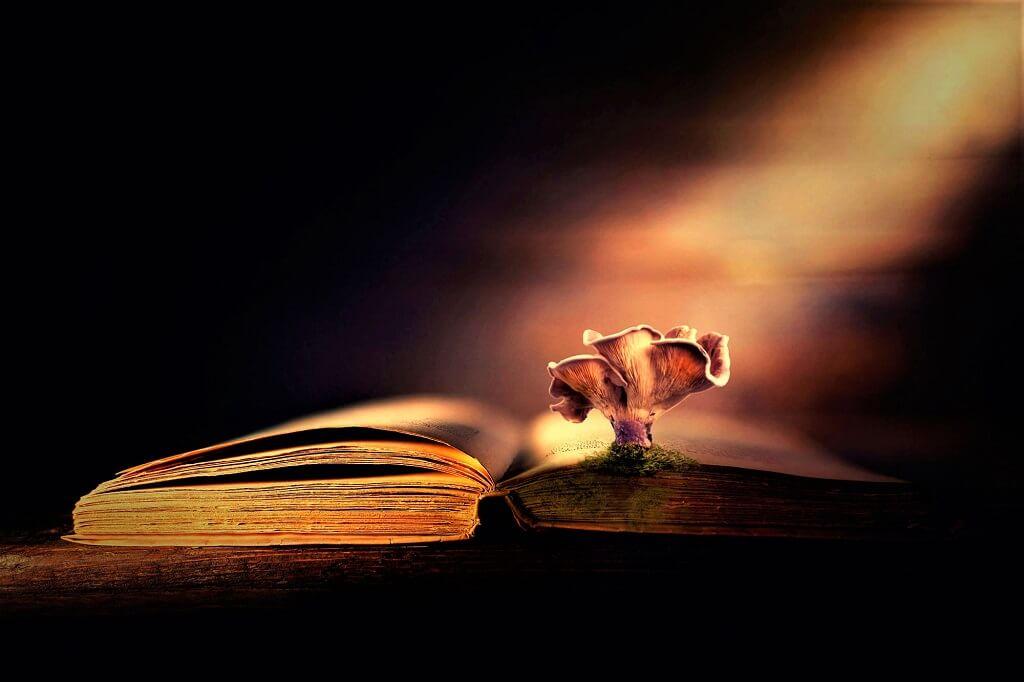 Книги от негативных мыслей