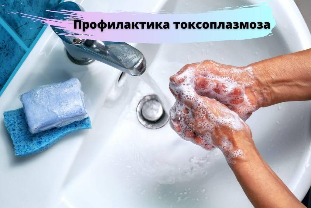 Профилактика токсоплазмоза