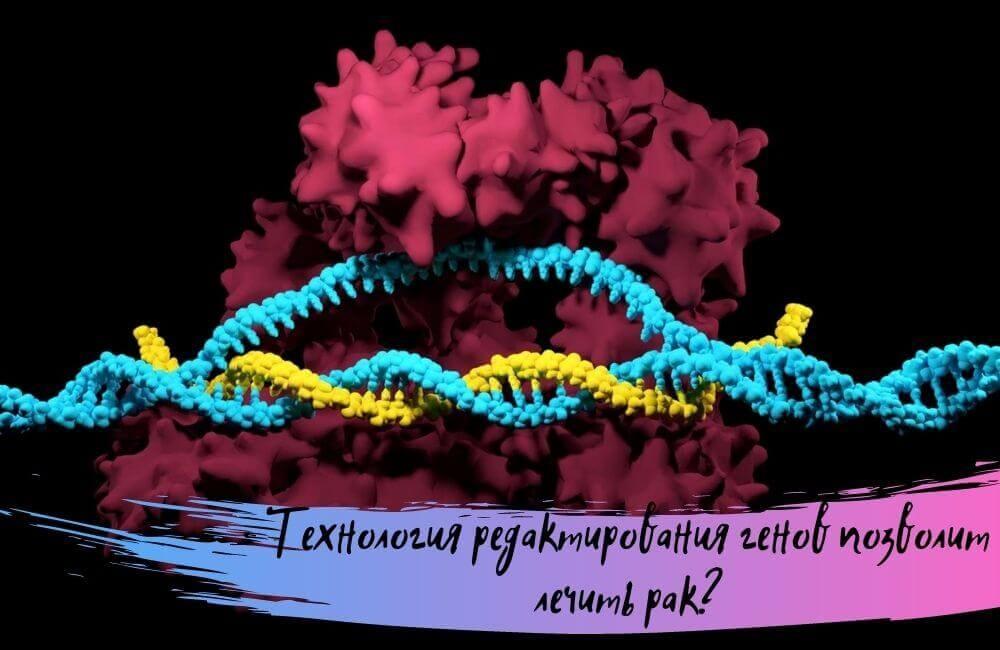 Технология редактирования генов позволит лечить рак?