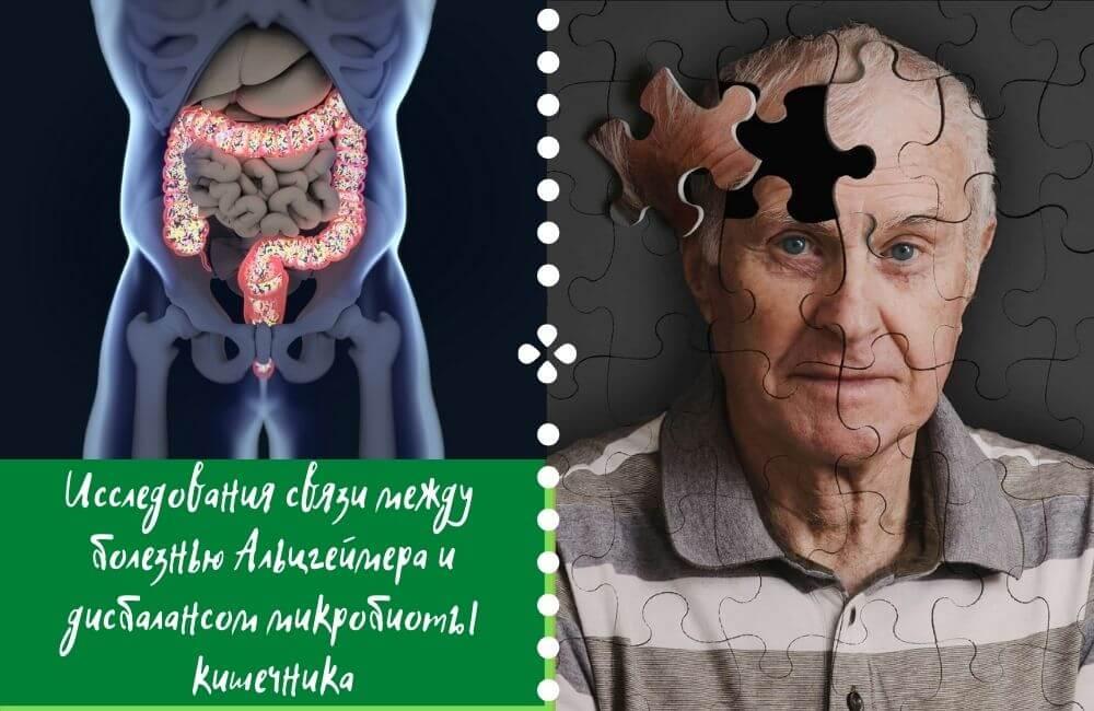 Обнаружена связь между болезнью Альцгеймера и дисбалансом микробиоты кишечника